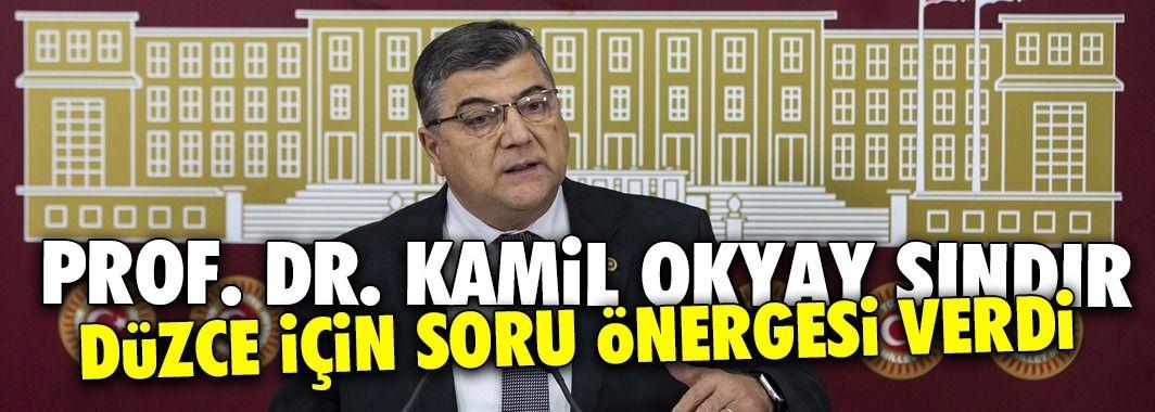 CHP'li Vekil Prof. Dr. Kamil Okyay Sındır'dan Düzce İçin Soru Önergesi