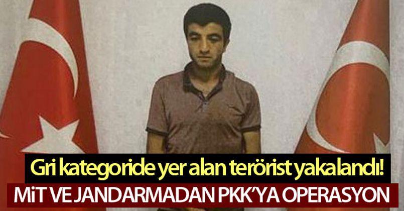 PKK'lı 'Şiyar Erzurum' kod adlı İslam BİLİZ ortak operasyonla yakalandı!