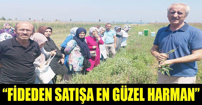 Düzceli kadınlar Artemisia Tıbbi Bitki Bahçesinde