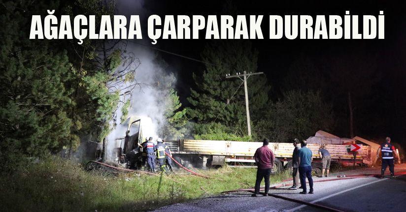 Ormanlık alana uçan tır yanarak kül oldu: 3 yaralı