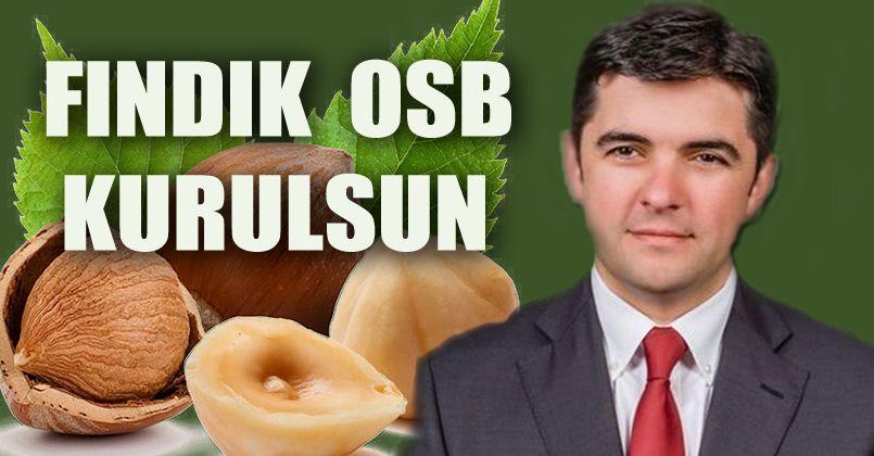 Fındık OSB Kurulsun
