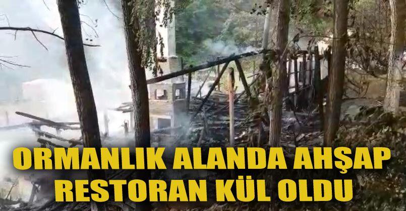 Ormanlık alandaki ahşap restoranda çıkan yangın panik oluşturdu