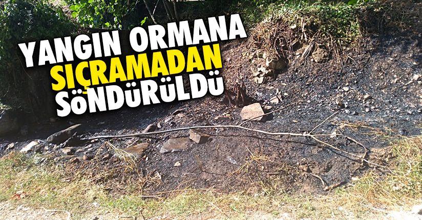 Orman yangınını Cumayeri itfaiyesi önledi