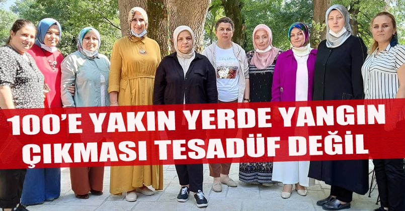 Ayşe Keşir: