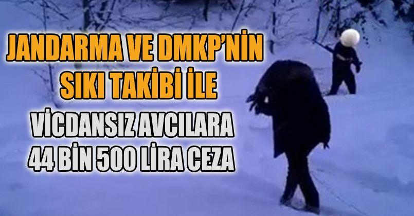 Fotokapana takılan avcılara 44 bin lira ceza