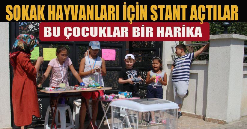 Sokak hayvanları çocukları harekete geçirdi