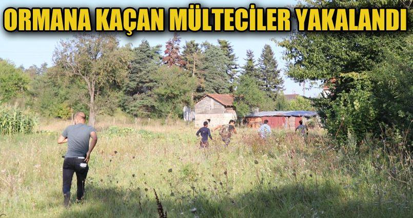 Ormana kaçan 16 göçmen böyle yakalandı
