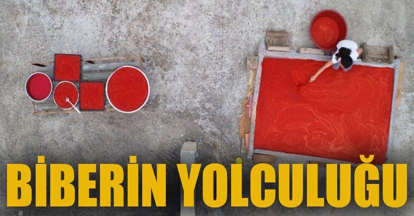 Adana'da biberin salça yolculuğu başladı, damlar kırmızıya boyandı