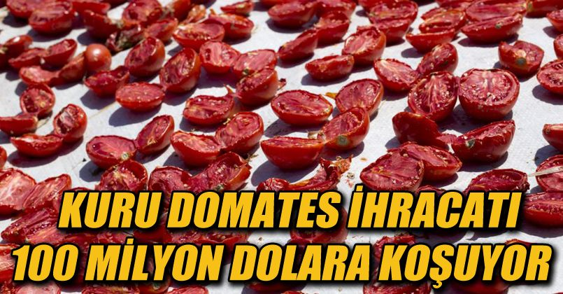 Kuru domates ihracatı 100 milyon dolara koşuyor