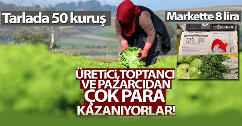 Tarlada 50 kuruş, markette 8 lira