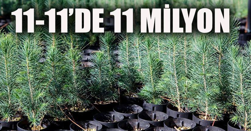 11 Kasım`da 11 milyon fidan toprakla buluşacak