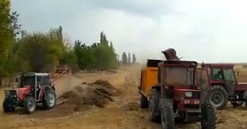 Zamlar çiftçiyi hayvan gübresine yöneltti