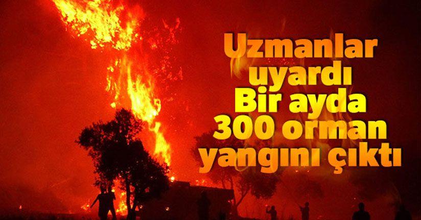 Bir ayda 300 orman yangını çıktı...Uzmanlar uyardı