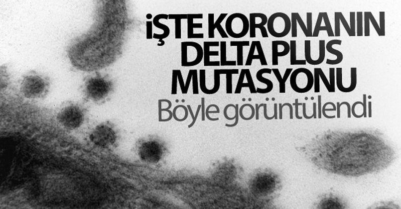 Rusya'da korona virüsün Delta Plus mutasyonu görüntülendi