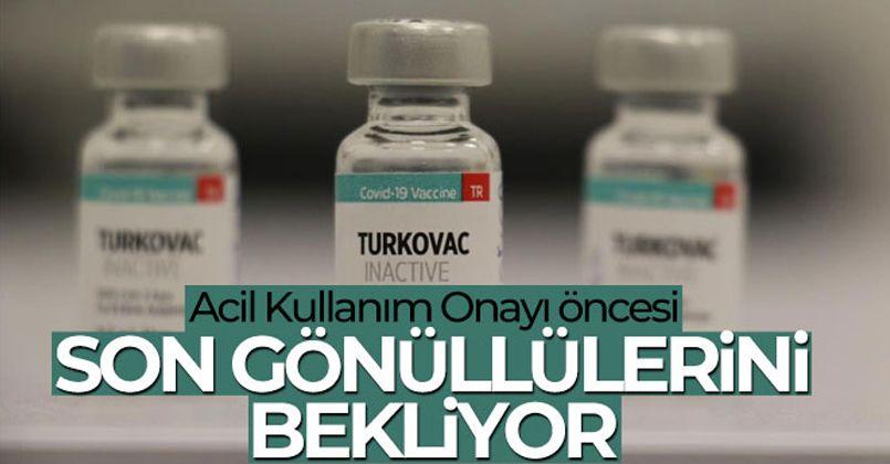 Yerli aşı Turkovac, Acil Kullanım Onayı öncesi son gönüllülerini bekliyor