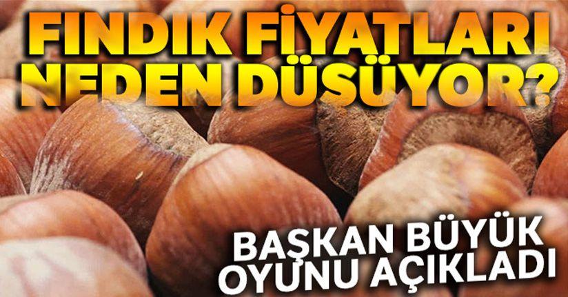 Bayraktar, fındık fiyatının düşüş nedenlerini açıkladı