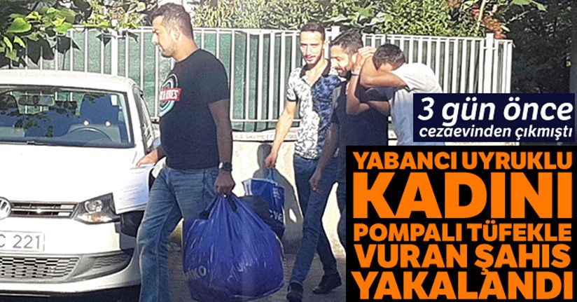 Yabancı uyruklu kadını vuran zanlı tutuklandı