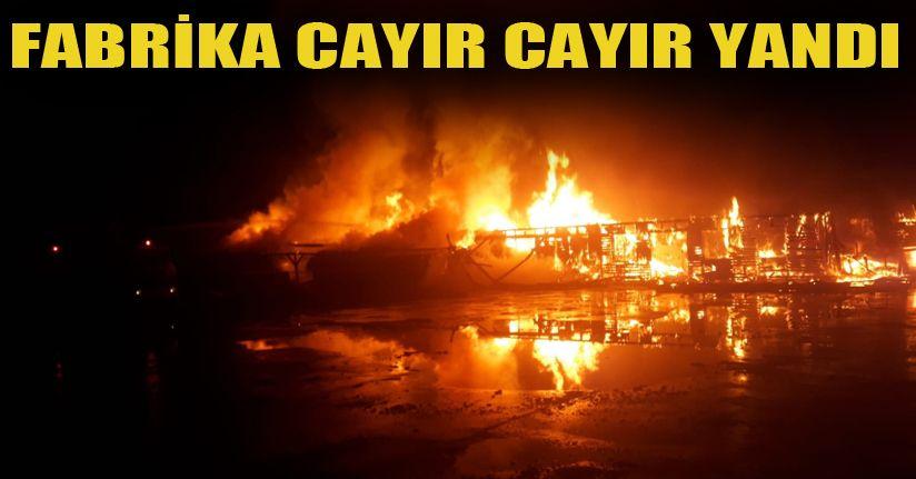Parke fabrikasında yangın