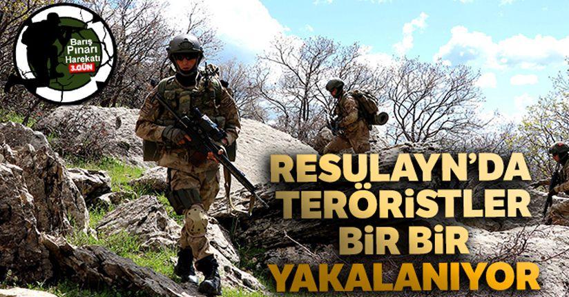 Resulayn'da teröristler bir bir yakalanıyor